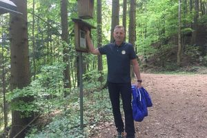 Sausende Schlucht & Vogelstimmenweg Peilstein